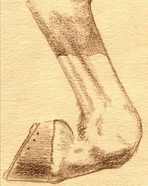 Do I Need a Full Set of Colored Pencils - White Leg