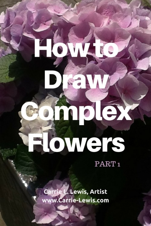 How to Draw Complex Flowers Part 1