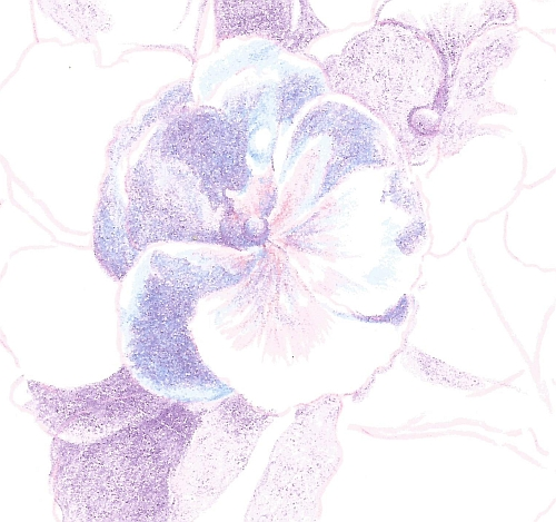 How to Draw Complex Flowers - Step 5