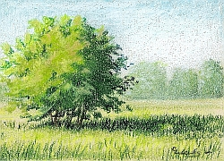 Drawing Natural Looking Landscapes - How to Draw Landscapes