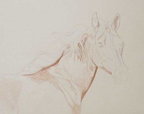 How to Draw Crisp Edges with Colored Pencils - Outlining
