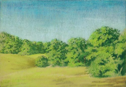 Blending Colored Pencil with Gamsol - Final Image