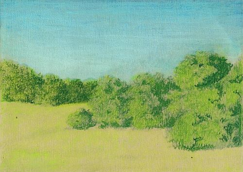 Blending Colored Pencil with Gamsol - Second Blend