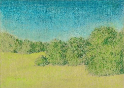 Blending Colored Pencil with Gamsol - Second Color Layers