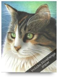 Cat Colored Pencil Drawing Kits for Beginners