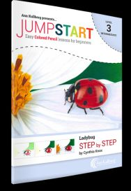 Lady Bug Drawing Kits for Beginners