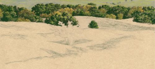 How to Draw Grassy Hills with the shadows shaded.