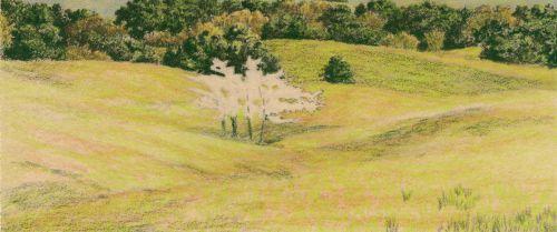 How to Draw Grassy Hills Continue darkening shadows.