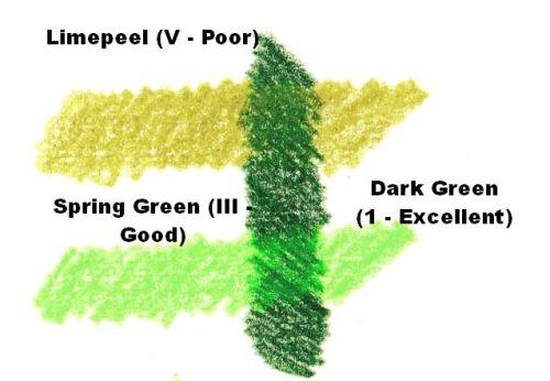 Do Fading Colors Still Fade Under Non-Fading Colors - Green Color Test 1