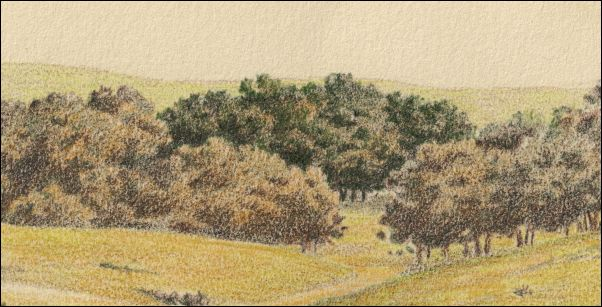 Umber Under Painting - Cloudy Landscape 16