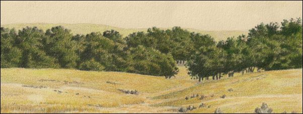 Umber Under Painting - Cloudy Landscape 17