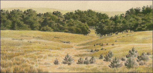 Umber Under Painting - Cloudy Landscape 19