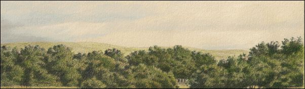 Umber Under Painting - Cloudy Landscape 26