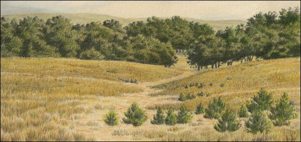 Umber Under Painting - Cloudy Landscape 27