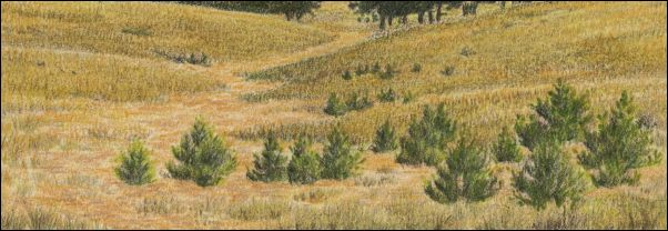 Umber Under Painting - Cloudy Landscape 29
