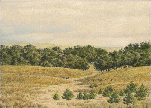 Umber Under Painting Landscape Tutorial - Color Glaze 2