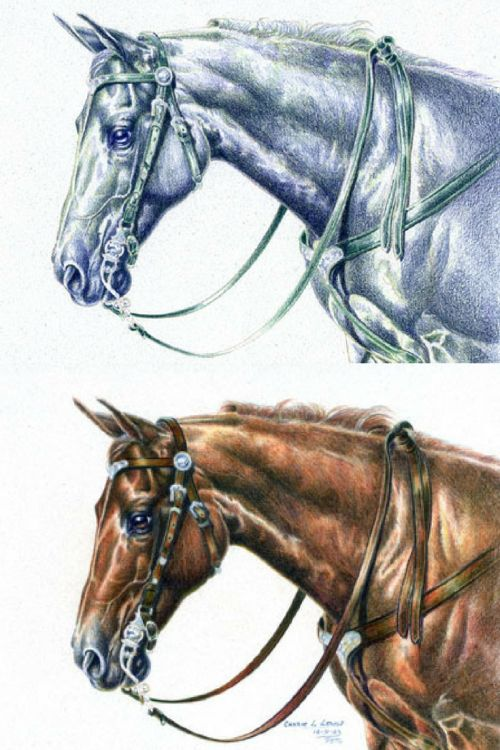 More Basic Colored Pencil Terms for Beginners - Monochromatic Method