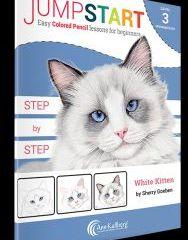White Kitten Jumpstart kit