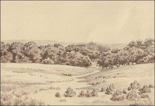 Why Use the Umber Under Drawing Method - Late Spring in the Flint Hills