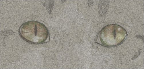 How to Draw Cat Eyes - Step 5a