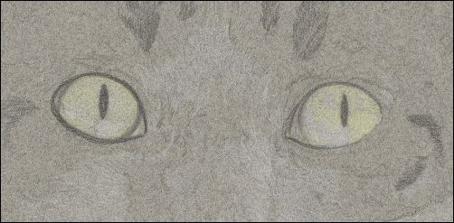 How to Draw Cat Eyes - Step 2