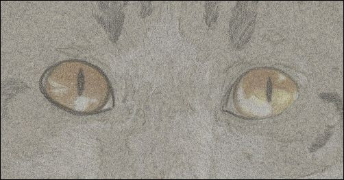 How to Draw Cat Eyes - Step 3