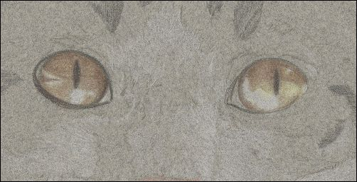 How to Draw Cat Eyes - Step 4a