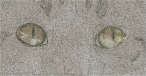 How to Draw Cat Eyes - Step 4c