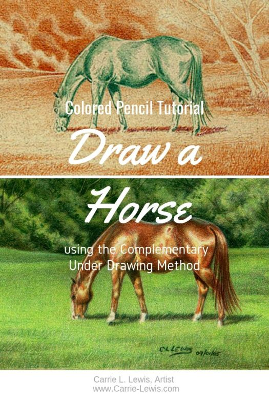 Draw a Horse Using the Complementary Under Drawing Method