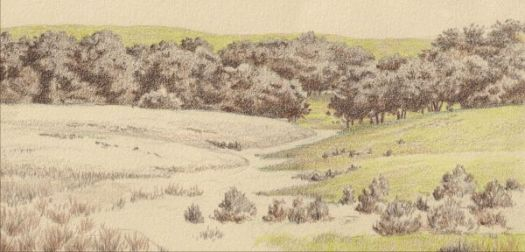 This image has an empty alt attribute; its file name is 14-Drawing-a-Landscape-in-Gray-Light-First-Color.jpg