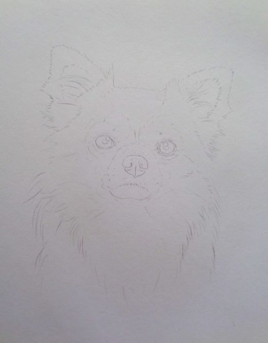 Step 1: The Line Drawing on Drawing Paper