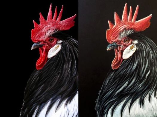 Drawing Vibrant Color on Black Paper - Color Comparison Between the Reference Photo and the Drawing.