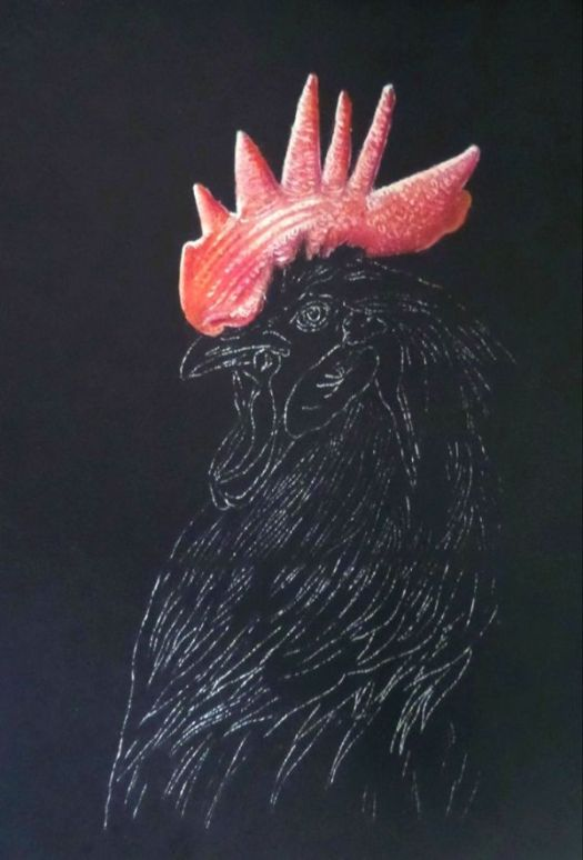 Drawing Vibrant Color on Black Paper - Continuing Color Layers