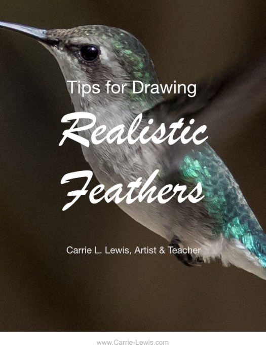 Tips for Drawing Realistic Feathers