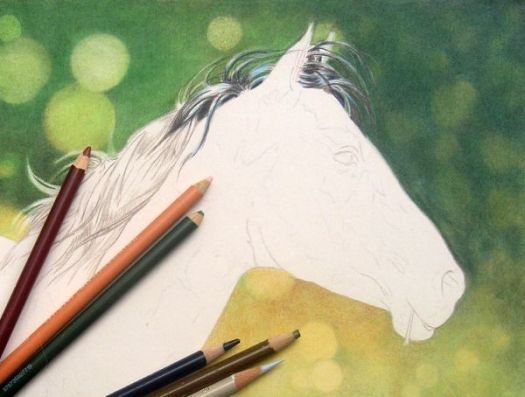 Learn how to draw a bokeh background for any subject with the online colored pencil course.