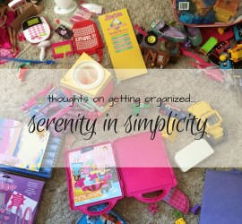 Thoughts on getting organized...Serenity in Simplicty