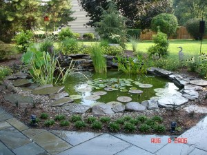 Water Feature in Your Landscape