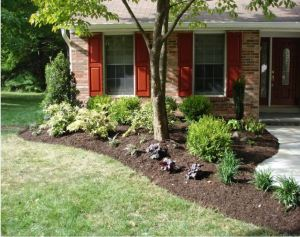 August Landscaping Tips Carroll Landscaping