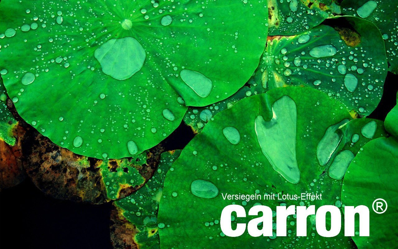 carron lotuseffekt versiegelung duschwand glas gegen kalk. Black Bedroom Furniture Sets. Home Design Ideas