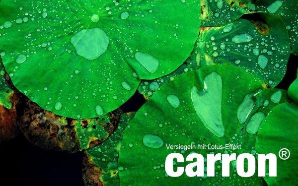 Lotuseffekt carron® Lotuseffekt Versiegelung Dusche Duschwand Glas Acryl gegen Kalk + Aktion: Microfaser-Poliertuch gratis dabei. Auch für Versiegelung von Badewannen.