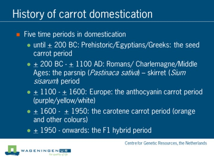 graphic history of carrot domestication key periods the time frame and