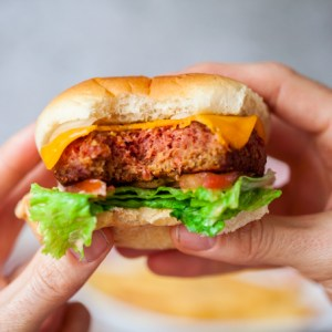 Vegan-N-Out Burgers