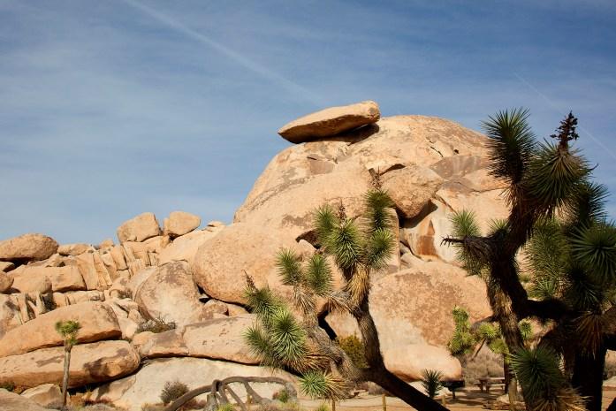 Cap Rock Joshua Tree National Park