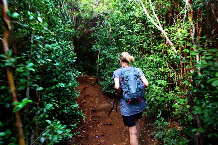 Trail to Waipoo Falls, Kauai