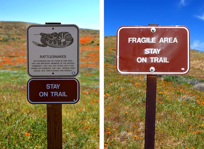 Warning signs at Antelope Valley Poppy Reserve in California