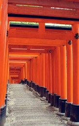 Brightly colored orange temple walkway in Kyoto, Japan