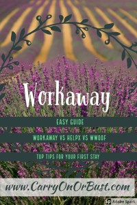 Workaway experience work away program reviews and guide