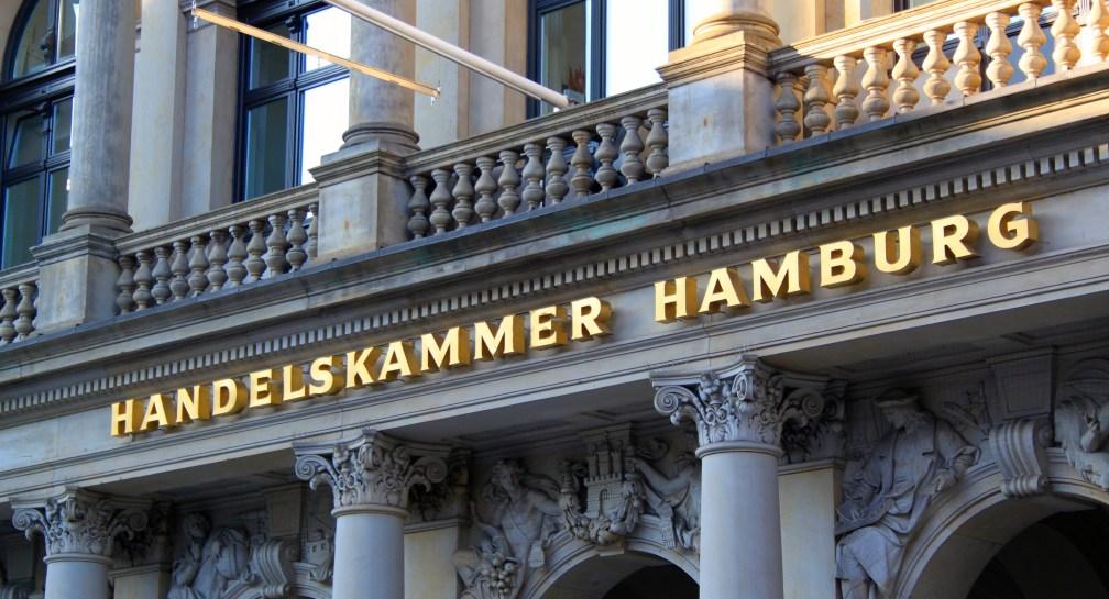 Junge Unternehmen endlich fördern! Hamburgs Zukunft nicht verspielen! image