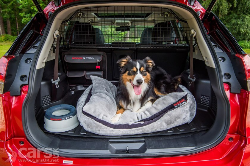 nissan x trail paw pack makes the x trail a dog friendly suv video cars uk. Black Bedroom Furniture Sets. Home Design Ideas