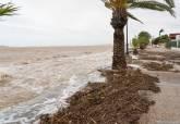 El Gobierno municipal supervisa la recuperación del litoral del Mar Menor y las zonas oeste y norte afectadas por la gota fría